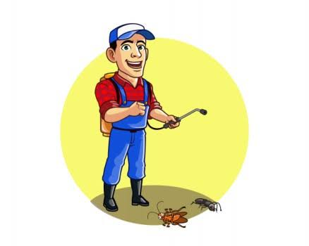 أسماء شركات مكافحة حشرات بالكويت