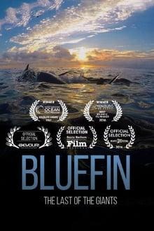 Watch Bluefin Online Free in HD