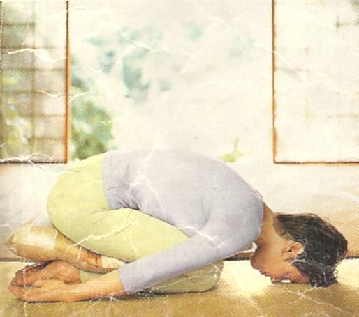 yoga0021.jpg