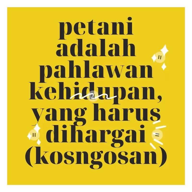quotes petani