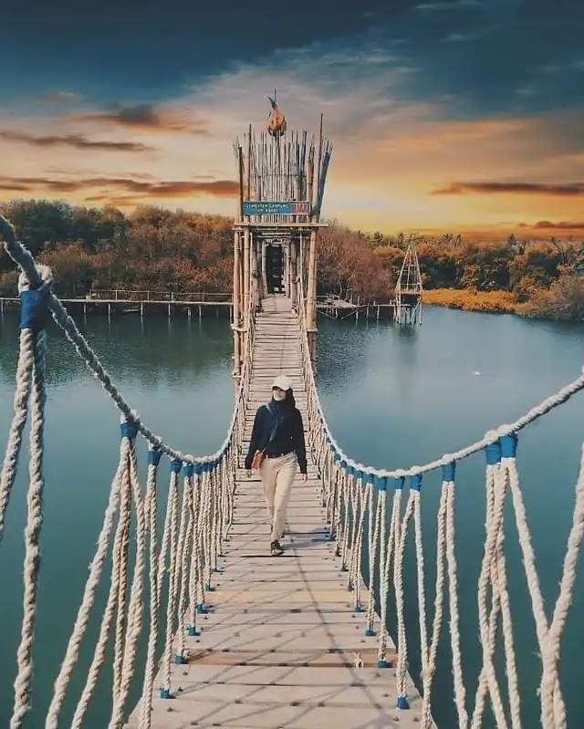 Jembatan Api-Api Hutan Mangrove Jogja - foto instagram hanarizkas