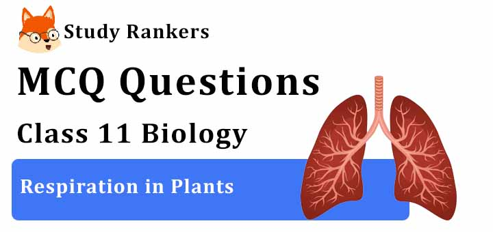 MCQ Questions for Class 11 Biology: Ch 14 Respiration in Plants