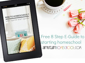 how to start homeschool? your free 8 step guide