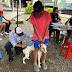 Animales de compañía de la Comuna 10 se beneficiaron de la jornada de vacunación