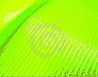 https://www.dreamstime.com/stock-photography-green-lines-image7078082#res487314
