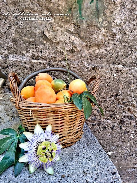 passiflora-e-frutto-della-passione