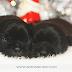1° Newborn Pet - Buldogue Francês