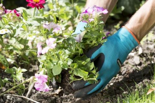 Beste tuinhandschoenen Gardena