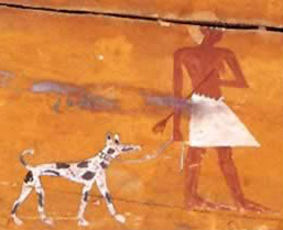 Animals worshipped in Ancient Egypt