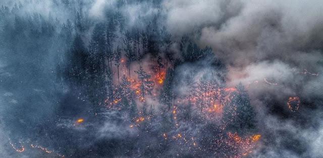 Η Grenpeace υποστηρίζει πως οι φωτιές στη Σιβηρία δεν θα σβήσουν μέσα στον Αυγούστο (βίντεο)