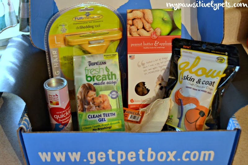 February PetBox review and giveaway