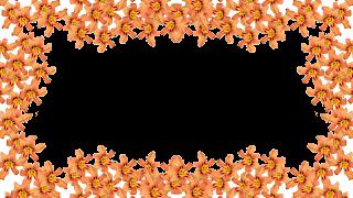 8 Moldura flor laranja png