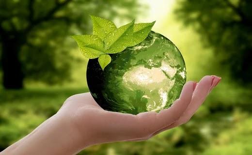 World Environment Day क्यों और किस लिए मनाया जाता है 2021