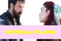 Ver Novela Estrella De Amor Capítulo 27