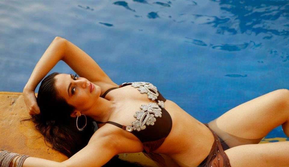 Ameesha Patel looking hot in brown bikini