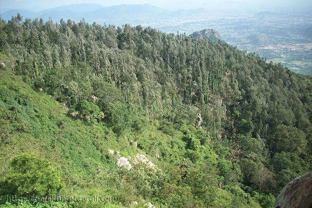 Yercaud View point