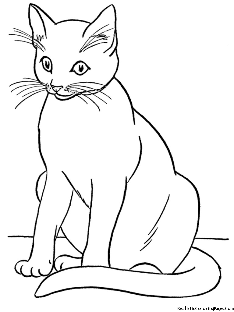 Realistic Coloring Pages Of Cats