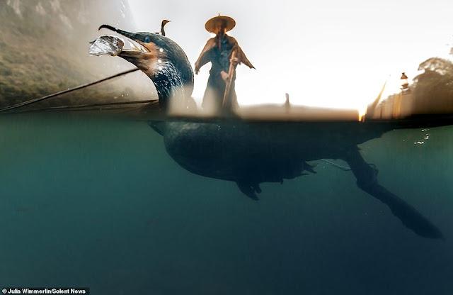 Ảnh đẹp Lão Ngư phủ tại sông Lệ Giang, Trung Quốc 5