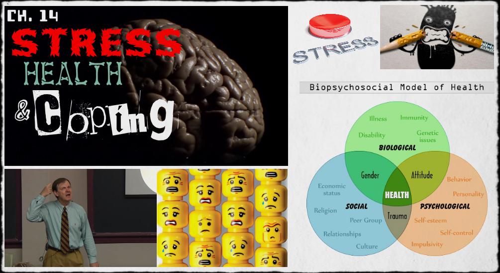 ap psychology with mr duez 8 2 stress. Black Bedroom Furniture Sets. Home Design Ideas