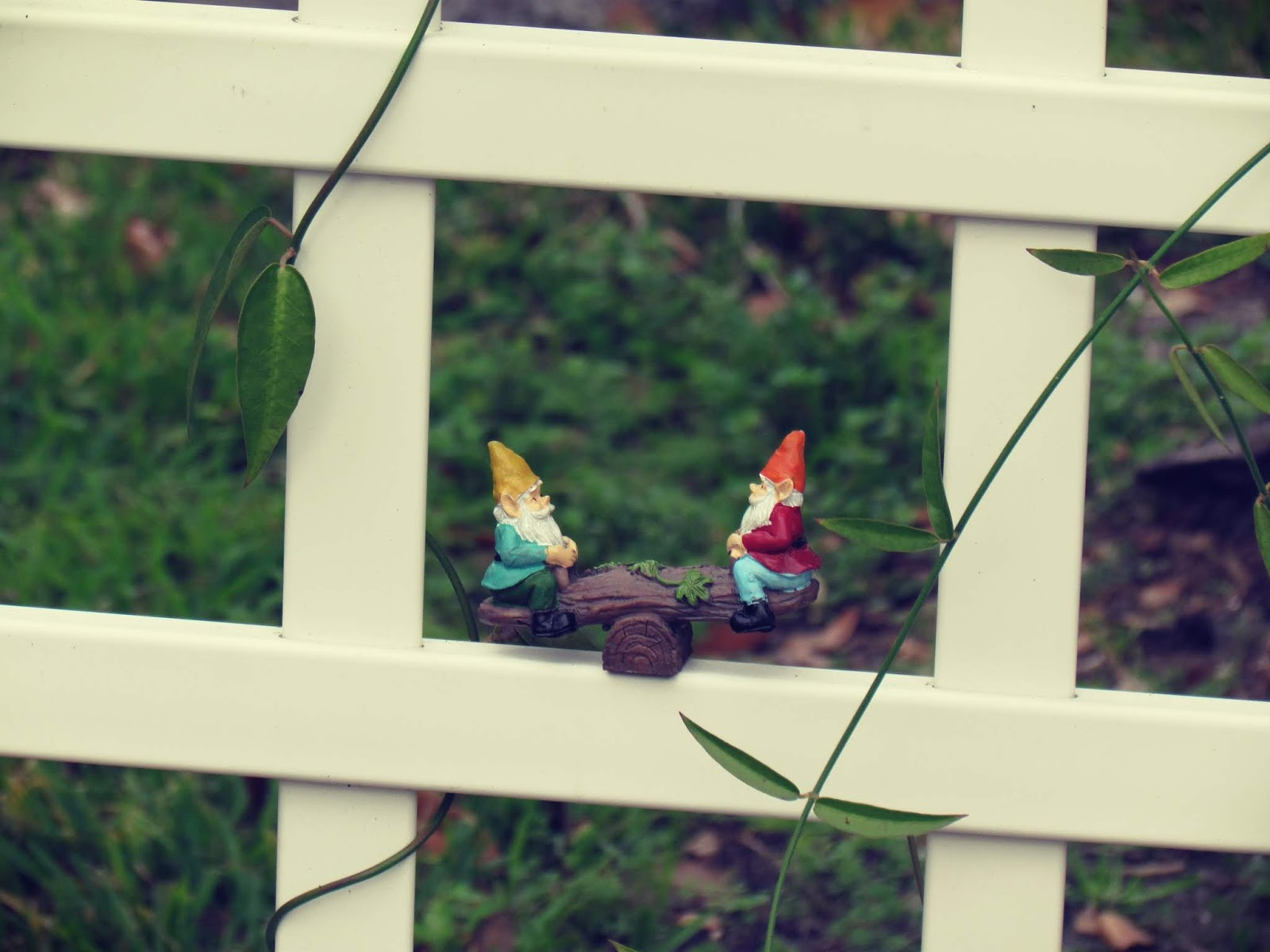 Lawn gnomes figurine on a white garden trellis in the park with a teeter totter and green vines