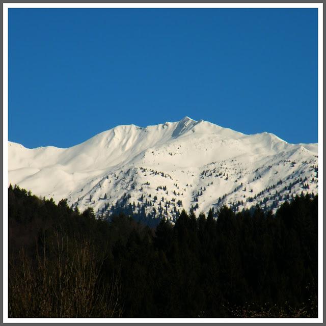 Collina di Forni Avoltri e i suoi dintorni