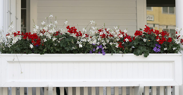 Red, white and blue window box