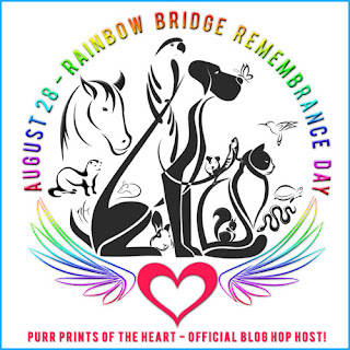 Rainbow Bridge Remembrance Day badge.