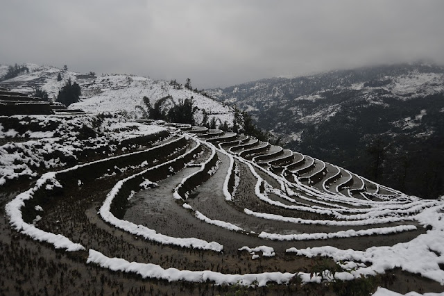 Snow Festival 2016 Gives Tourists Glimpse Of Winter In Sapa