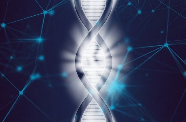 Bioinformatics in Genetic Engineering