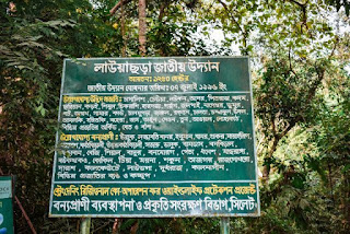 About Lawachara national park