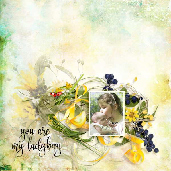 ladybug © sylvia • sro 2019 • yellow in the grass by ditaB designs