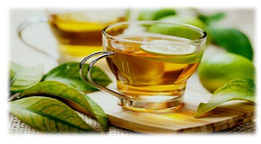 دراسة صينية.. شرب الشاي الأخضر يقلل من مخاطر أمراض القلب والدورة الدموية