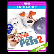 La vida secreta de tus mascotas 2 (2019) WEB-DL 1080p Audio Dual Latino-Ingles