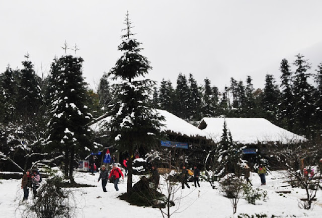 Snow festival gives tourists glimpse of Sa Pa's winter 2