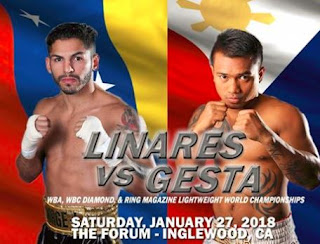 "Mercito ""No Mercy"" Gesta vs Jorge Linares"