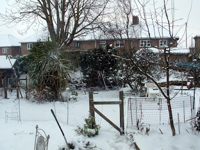 A garden gate covered in snow