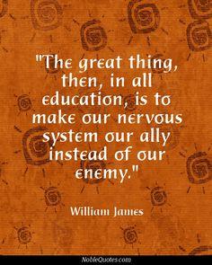 Education%2BQuotes%2B%2528843%2529