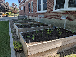 the gardens are growing at Davis Thayer (taken June 8, 2019)