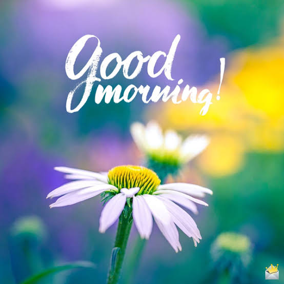 500+ good morning hd images New 2020 New HD Image Beautiful Image
