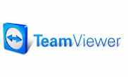 TeamViewer Portable 9.0.32494