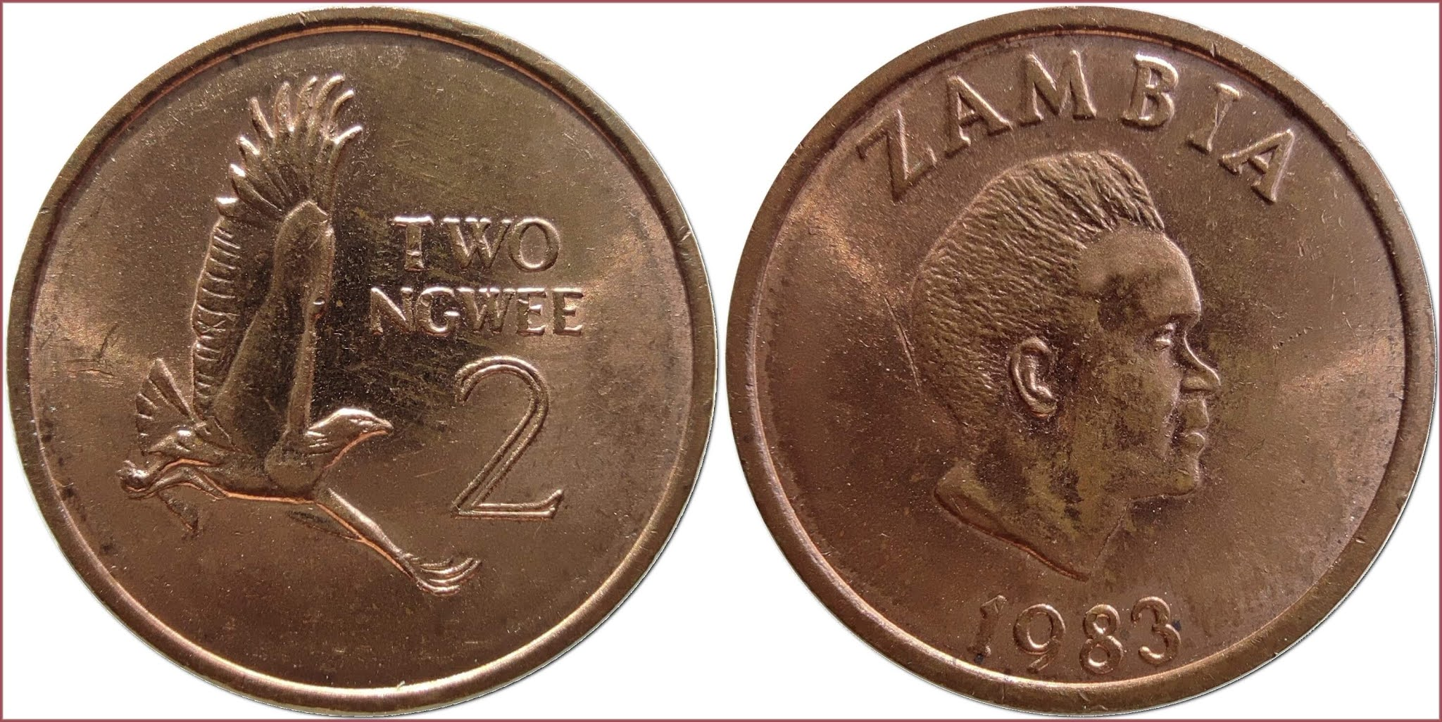 2 ngwee, 1983: Republic of Zambia