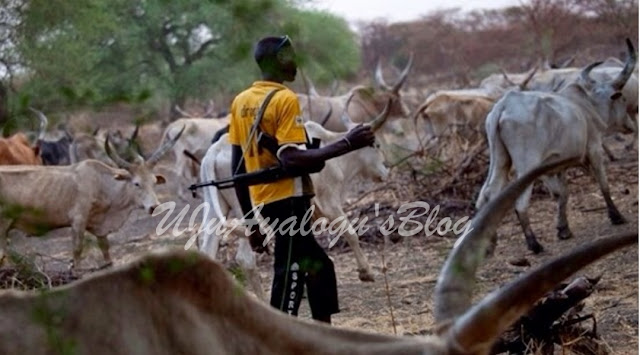 FG Bans Open Grazing To Curb Herdsmen-Farmers Clashes