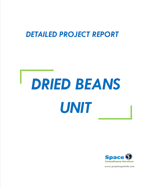 Project Report on Dried Beans Unit