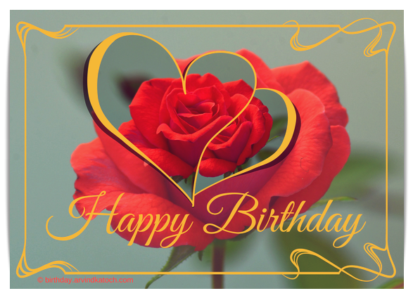 Love, Birthday Card, Red Rose, Rose,