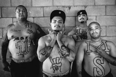 Miembros de la pandilla Mara Salvatrucha