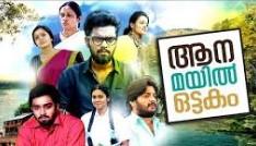 Aana mayil ottakam 2016 Malayalam Movie Watch Online
