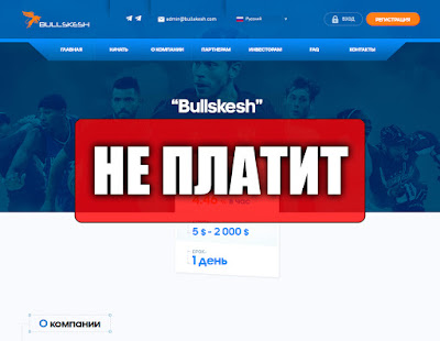 Скриншоты выплат с хайпа bullskesh.com
