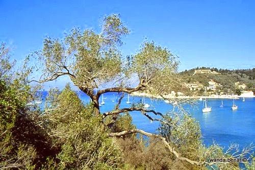 Isole Ionie: il mare di Paxos