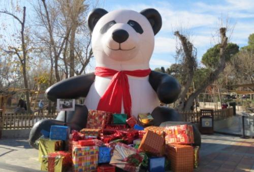 Campamentos de Navidad 2017 en el Zoo de Madrid