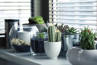 Ideas to Transform your Home Effortlessly